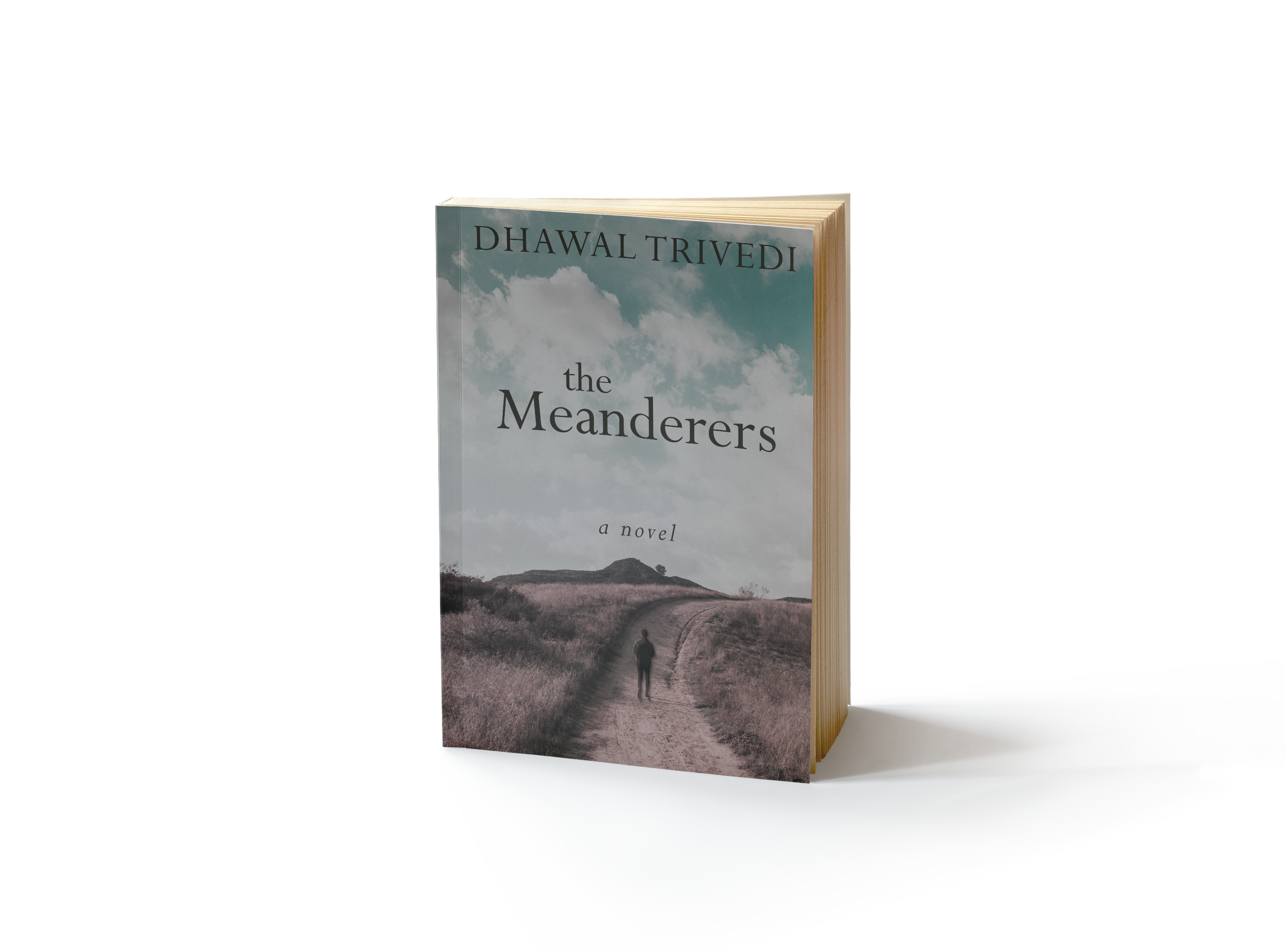 The Meanderers – A Novel by Dhawal Trivedi, releases worldwide 20th July 2018 21