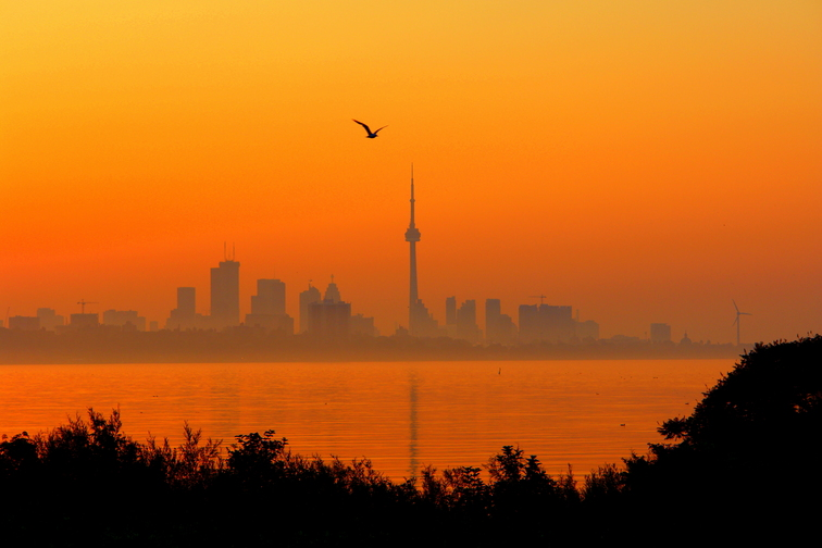 Ontario HVAC Company Issues Warning To Homeowners About The Dangers Of Excessive Heat 14