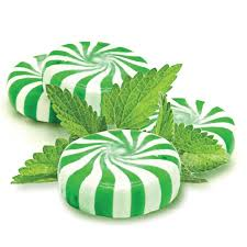 Menthol Market Analysis by Trends, Market Segment, Revenue & Forecast to 2028: Top Players – Agson Global, Symrise AG, Nantong Menthol Factory, Takasago, Tienyuan Chem 32