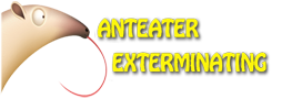 Anteater Exterminating Inc. Provides Free Termite Inspection in Phoenix 1