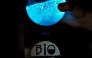 PyroFarms Launches New Bioluminescent Ball – The Bio-Orb 5