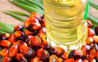 Global Palm Oil Market to Reach 108 Million Tons by 2024 – IMARC Group 4