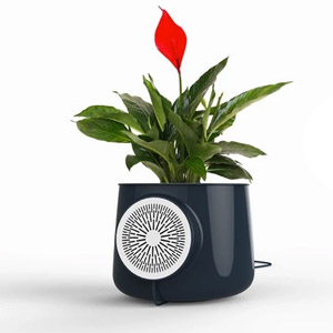 Air Purifiers Market 2019: Research On Top Players Like Godrej Group, Electrolux, Haier, Philips, Hitachi, Samsung Electronics, Whirlpool Corporation, LG Electronics, BSH Home Appliances Group & Other 2