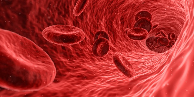 Cell Therapy Market Size, Revenue, Growth, Trends, Supply-Demand, Key Players, Industry Report, Segment By 2023 1