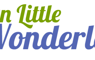 On Little Wonderland Releases Advice on Best Baby High Chairs 7