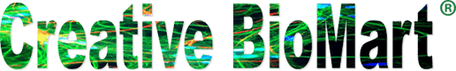 Creative BioMart Introduces Two Types of Bacterial Expression Systems for Protein Expression 1