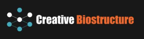 Creative Biostructure Launches an Innovative Protein Crystallization Center 1