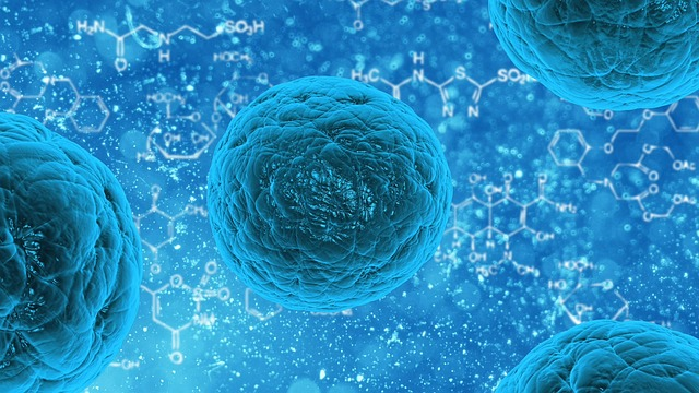 Cell Therapy Market Report Size is expected to register a CAGR of 22.36% to reach USD 20,217.00 million by 2023 | Global Industry Research Study, In-Depth Analysis, Segment Overview 1