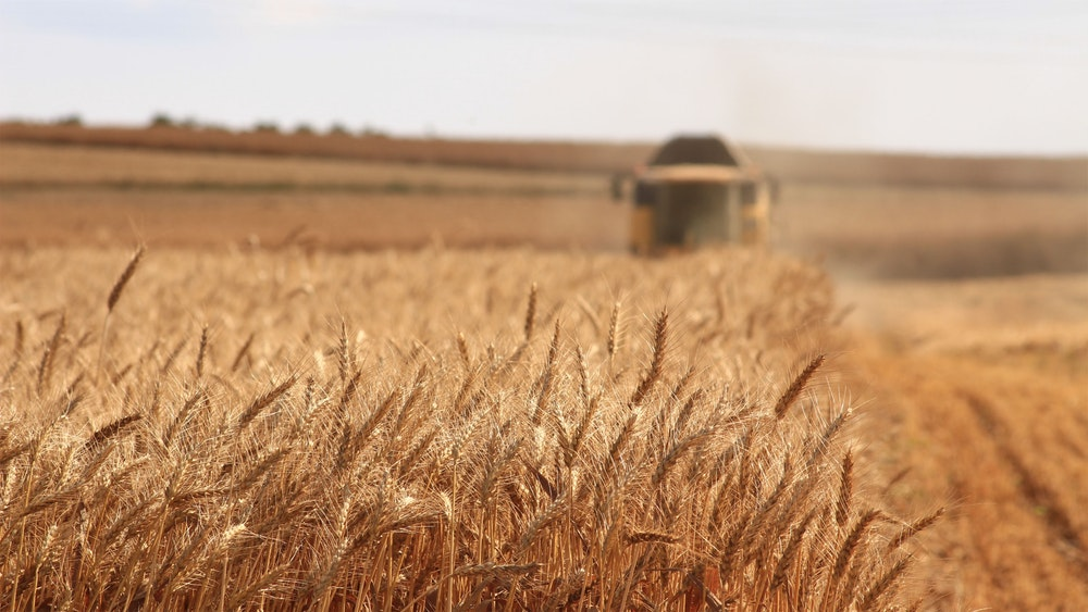 Indian Farming Market Size Worth INR 30,675 Billion by 2024 | CAGR 10.8% – IMARC Group 1