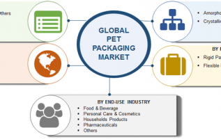 Polyethylene Terephthalate (PET) Packaging Market 2019 Global Size, Top Players, Outlook, Future Scope, Trends, Business Growth, Comprehensive Analysis, Segmentation And Regional Forecast To 2023 4
