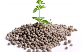 Global Fertilizer Additives Market Research Report Analysis 2019 Focusing on Top Companies like Solvay, Calnetix Technologies, LLC., Cameron Chemicals, Europiren B.V., Golden Grain Group Limited. 4