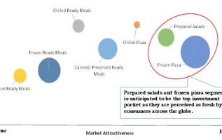 Ready Meals Market Growing at CAGR of 10.6%   Top Companies Like Bakkavor Foods, ConAgra, Greencore Group, JH Heinz Company Ltd, Nestle SA 4