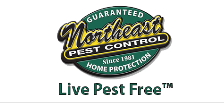 Northeast Pest Control Offers Home Protection Plan for Year-Round Pest Prevention 3