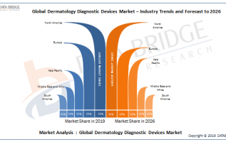 Dermatology Diagnostic Devices Market Segment Analysis By Key Players Agfa, ZEISS Group, MELA Sciences, Inc., Hologic Inc., Spindletop Capital, HEINE Optotechnik, GE, Philips, Leica Microsystems, 2
