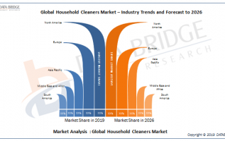 Household Cleaners Market Estimated to Experience a Hike in Growth By Godrej Group, Henkel, S. C. Johnson, The Clorox Company,RB, Bombril, McBride, Kao Corporation, Church & Dwight Co., And Others 4