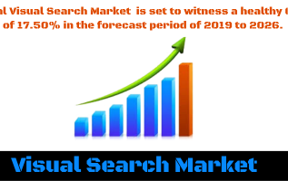 Visual Search Market is Booming at highest CAGR of 17.50 % by 2026 with Top Key Players Microsoft, Pinterest, Syte.ai, Google, Turing Analytics 2