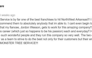 Springdale AR Tree Service Receives Glowing Testimonial From Delighted Customer 3