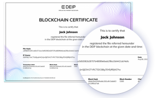 Protecting intellectual property in 0.5 seconds. How DEIP leverages blockchain to revolutionize IP protection 1
