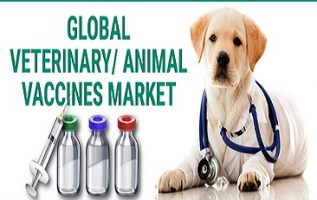 Veterinary Vaccines Market Global Trends, Size, Share, Investments, Acquisition, Top Key Companies Profile, Industry Growth by Forecast to 2025 2