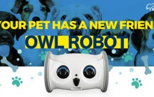Owl ROBOT: Pet's Ultimate Nanny and Best Playmate now on Kickstarter 3