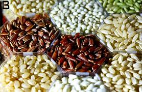 Seed Treatment Market: Global Key Players, Trends, Share, Industry Size, Growth, Opportunities, Forecast To 2025 3