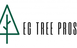 EG Tree Service Pros Announces Its Expanded List Of Services 2