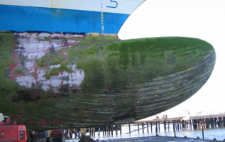 Ballast Water Treatment Technologies, Advantages and Disadvantages 2