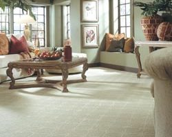 Flooring Showroom in Ocoee, FL, Allows Homeowners to Explore Remodeling Options with Carpeting 6