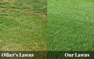 Premier Gardens Offers Garden Maintenance, Lawn Care, and Grass Cutting among other Services They also Offer 3