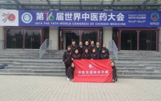 The 16th world conference on Chinese medicine was held in Hungary 5