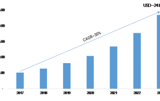 Real Time Payment Market 2K19 Growth Rate: A Definite Shift Towards the Developing World, Explosive Factors of Revenue by Key Vendors Size and Demand Till 2K23 1