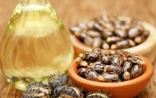 Castor Oil Market 2019, Market Share, Size, Price Trends, Growth Rate, Forecast and Analysis of Key players 2024 3