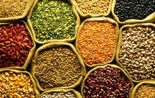 Pulses Market Analysis By Industry Size, Share, Price Trends, Revenue Growth, Development And Demand Forecast To 2024 4