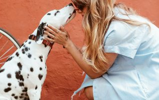 Realtime Campaign Explains How One Can Get the Best Insurance for Pets 2
