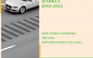 Global ADAS Radar Market 2019-2025  Size-Share-Opportunity-Trends-Growth 5
