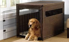 Dog Cages Market Size, Status and Forecast to 2025: Petsfit, Advantek, Delton Pet Supplies, Boyle's Pet Housing 4