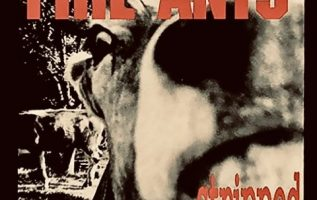 """The story of Seattle's forgotten Grunge band """"The Fire Ants"""" spanning almost three decades 4"""