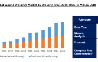 Global Transparent Dressings Market Analysis 2019 – Dynamics, Trends, Revenue, Regional Segmented, Outlook & Forecast Till 2025 1