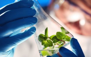 Separation Systems For Commercial Biotechnology Market 2019 Global Trend, Segmentation And Opportunities Forecast To 2025 | 46 Key Player Profiles Covered 4