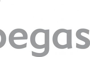 The New Pegasus Poised to be the Leading Provider of Distribution and E-commerce Services to the Worldwide Hotel Industry 4