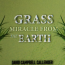 """Ruth Finnegan Announces A HAPPY and WISE BOOK """"Grass, Miracle from the Earth"""" 20"""