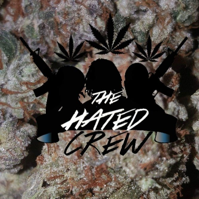 Analog Beats Presents Talented Squad The Hated Crew 1