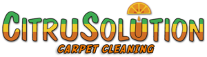CitruSolution Carpet Cleaning Receives Rave Reviews 11