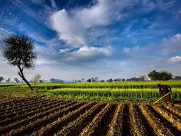 Agriculture Reinsurance Market Size May See Big Move by 2020 | Korean Reinsurance, China Reinsurance, Transatlantic, loyd's 2