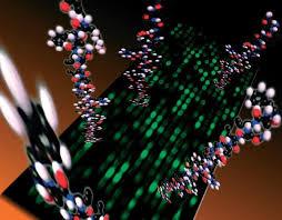 Protein Biochip Market In-Depth Analysis on Forthcoming Development: key players Zyomyx, Randox, Orlaprotein, GE Healthcare 1