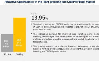 Global Plant Breeding and CRISPR Plants Industry Analysis 2019, Market Growth, Trends, Opportunities Forecast To 2024 5