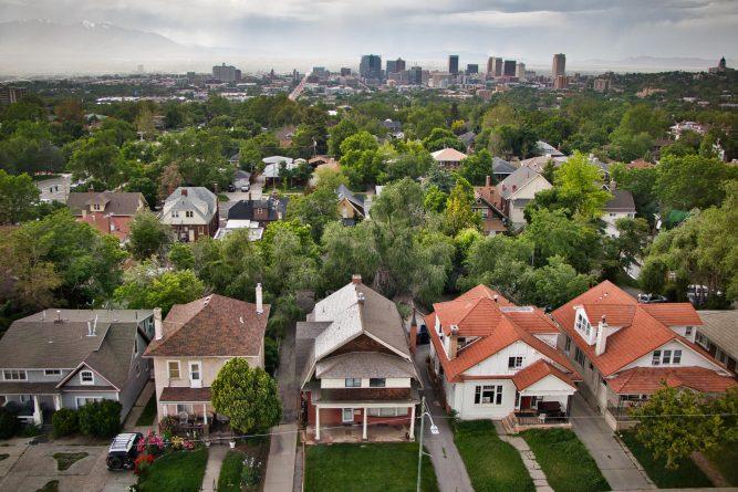Salt Lake City Tree Service Sets Up For 2020 Service Area Expansion 1