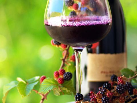 Fruit Wine Market Outlook 2021: Big Things are Happening 1