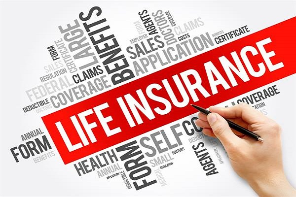 Life Insurance Market in Finland Key Trends and Opportunities to 2024 1