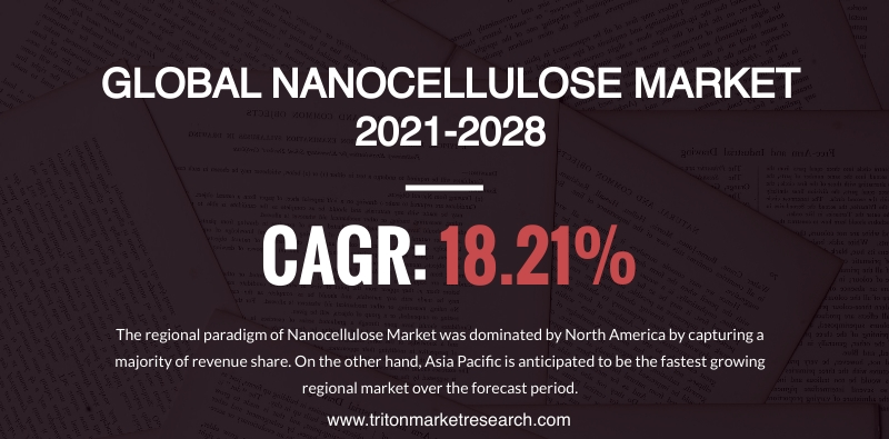 The Global Nanocellulose Market Calculated to Grow at $1932.08 Million by 2028 1